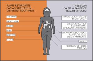 fr-health-effects
